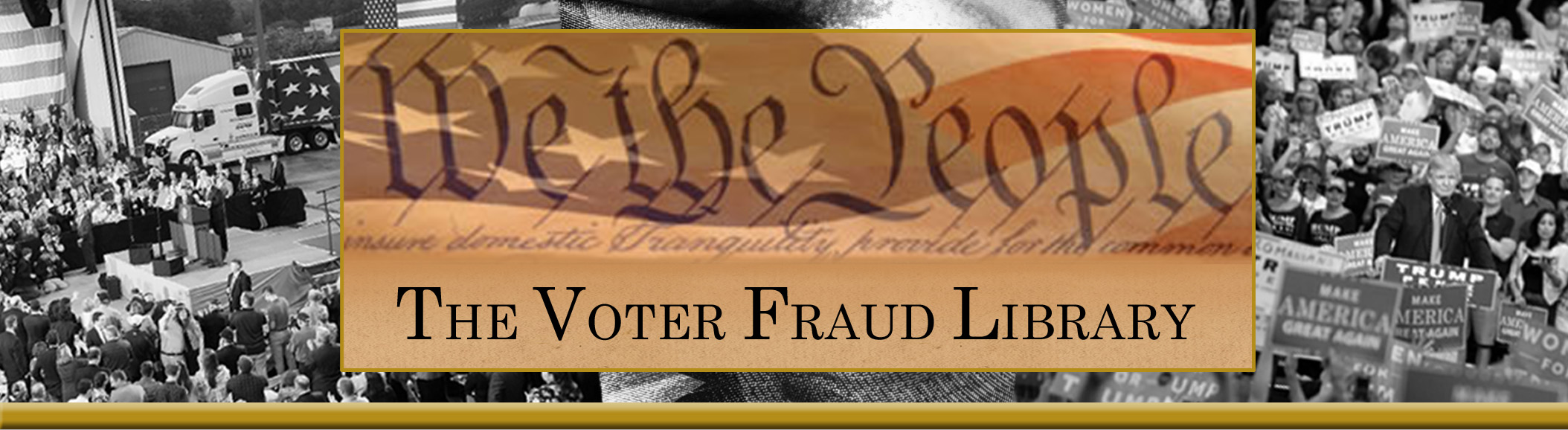 The Voter Fraud Library